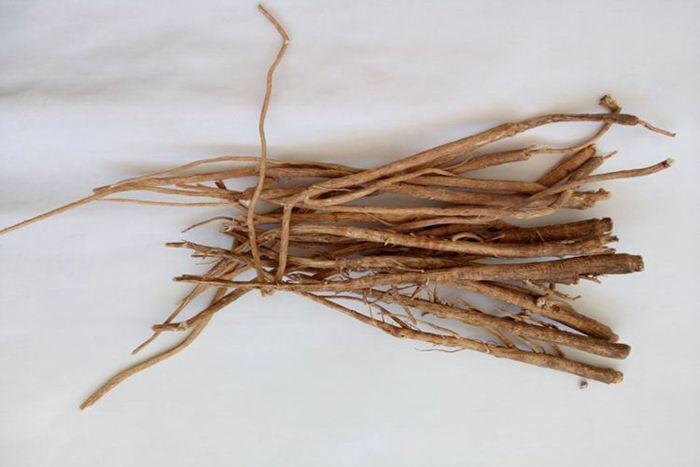 麻黄根的功效与作用及禁忌