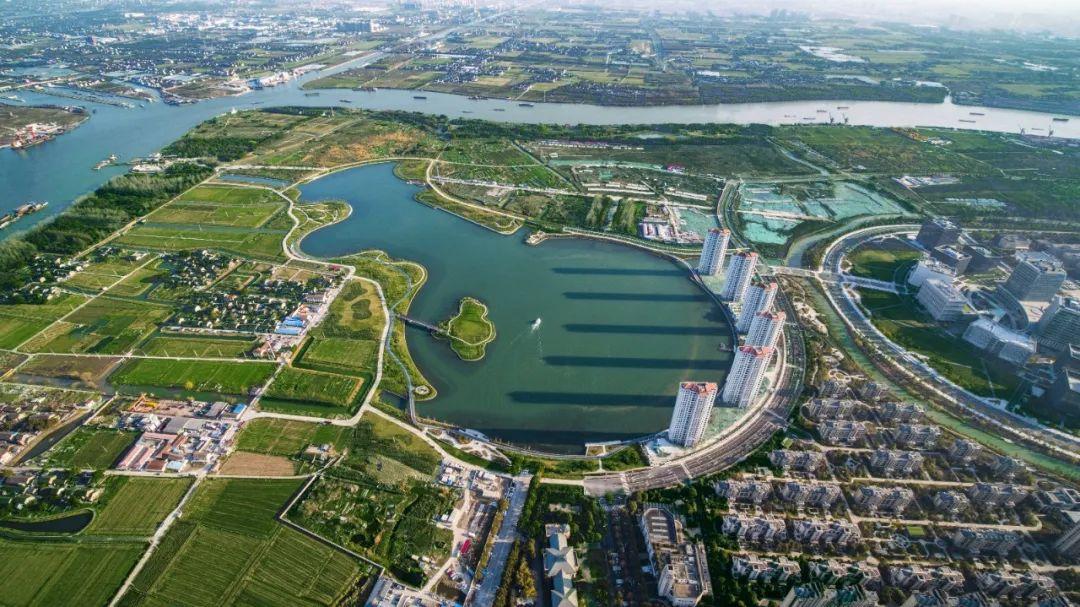 上海市园林街镇!吴泾的春天美到窒息