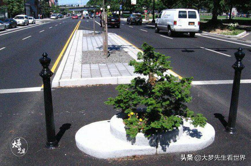 世界上面积最小公园:小到只能种下一棵树,40年被偷了上百次