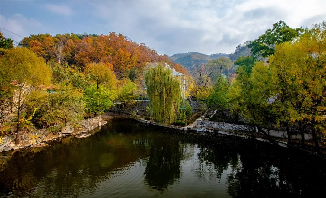 秋末初冬出游,在济南一定不能错过的小众古村,邂逅未经雕琢的美好!
