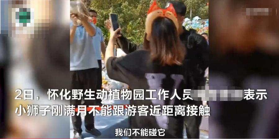 女游客欲接触幼狮拍照,保安上前劝阻反遭辱骂,展出被迫结束