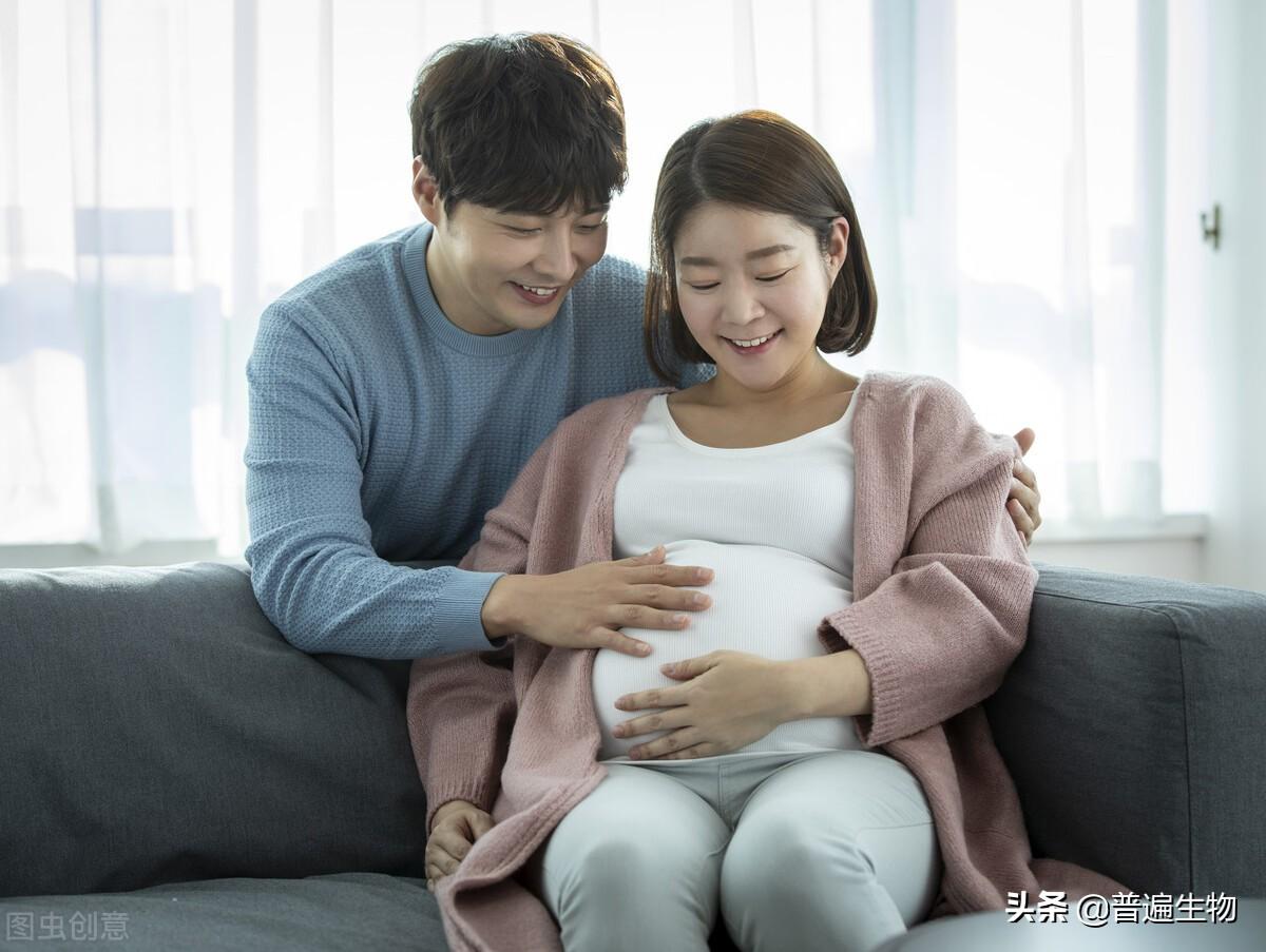 """打破认知,中国海军军医大学科学家让""""爸爸""""也可以怀孕生孩子"""