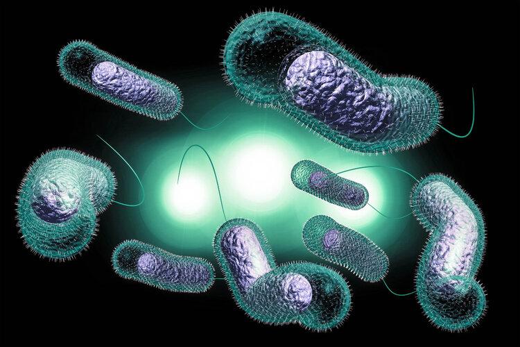 """两大抗生素""""阿莫西林""""和""""头孢""""要认清,用对是宝,用错是害药"""