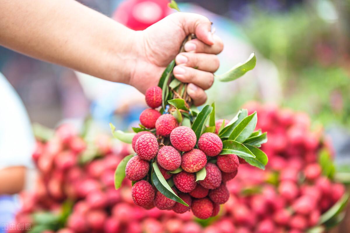 """夏天吃什么水果好?别给宝宝空腹吃荔枝,吃不对小心""""荔枝病"""""""