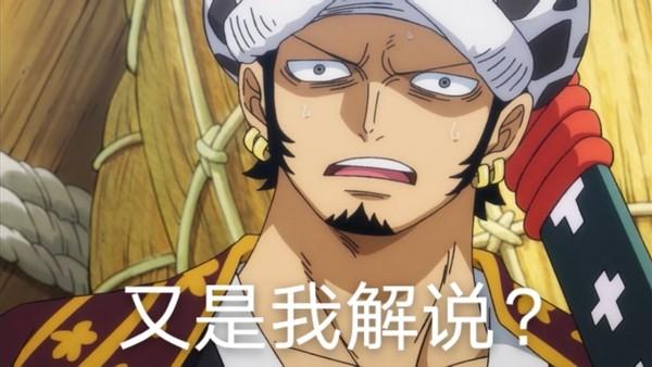 海賊王1003:「解說員」特拉仔再次上線!科普凱多「人獸型」