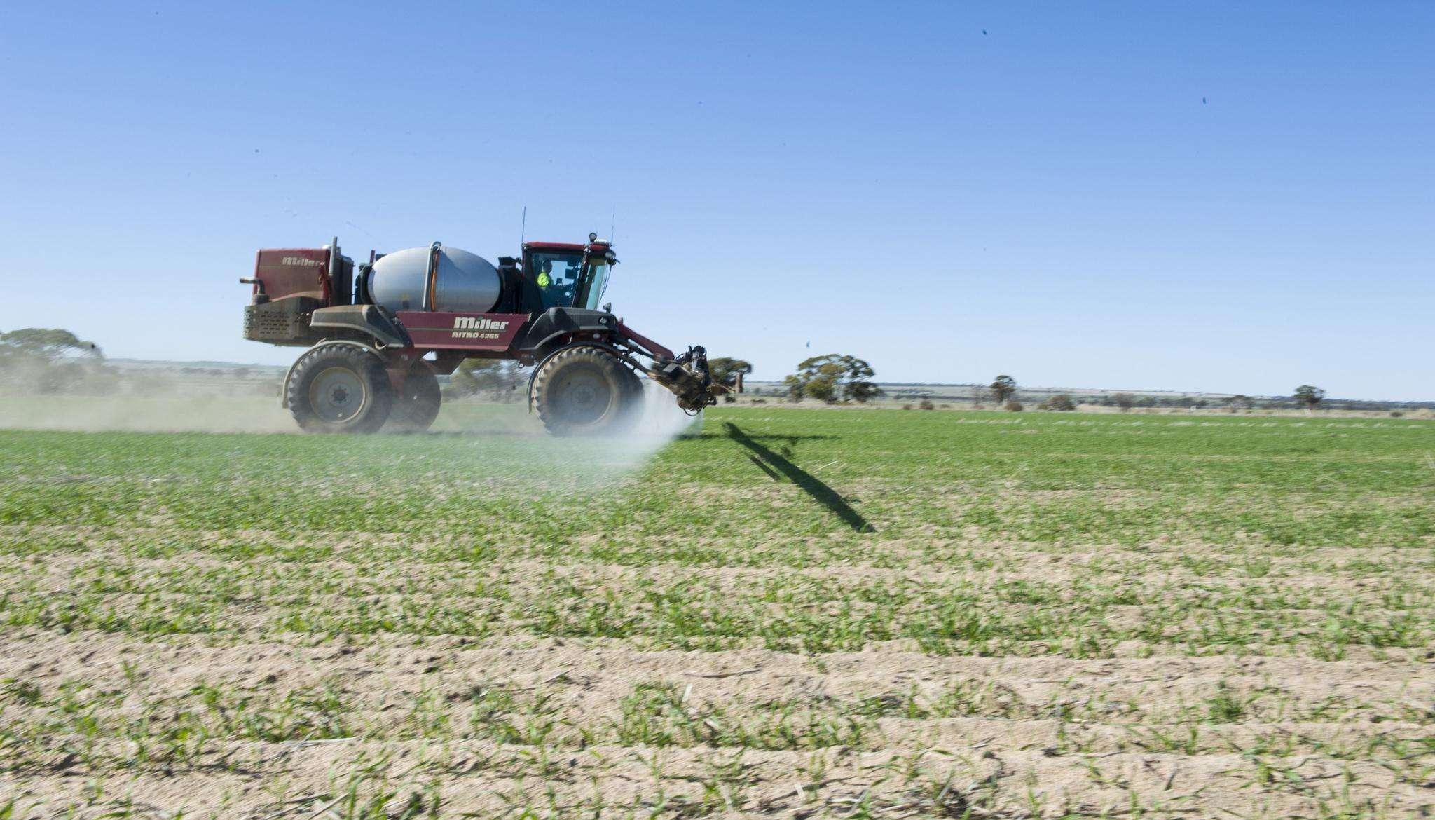 """大麦成熟期将至,澳大利亚急眼了,要求我国90天复审""""双反""""关税"""