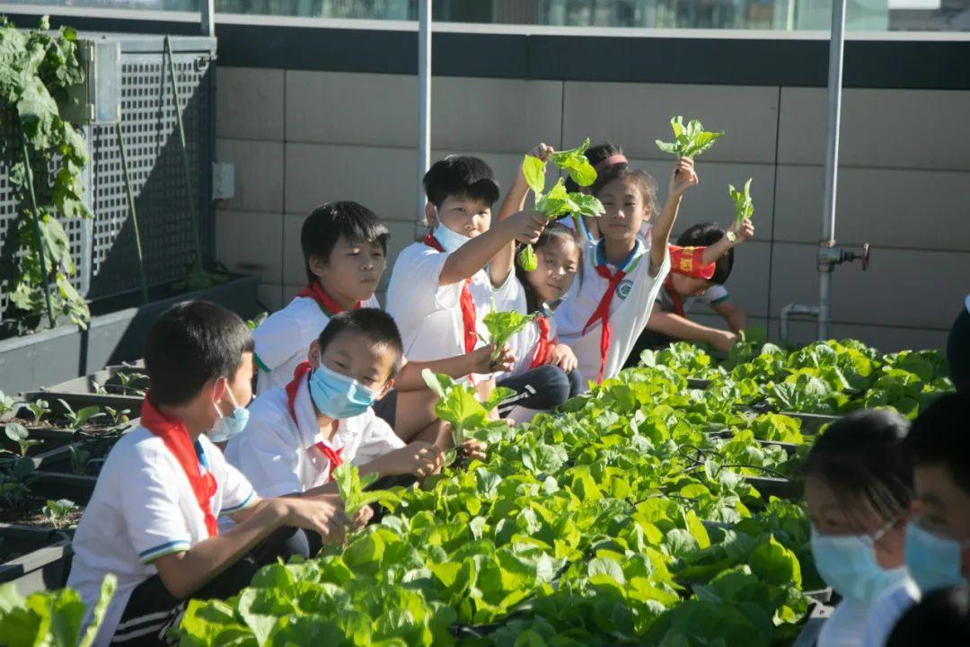 """""""都市农场实践课堂""""劳动教育示范基地新学年启动仪式成功举办"""