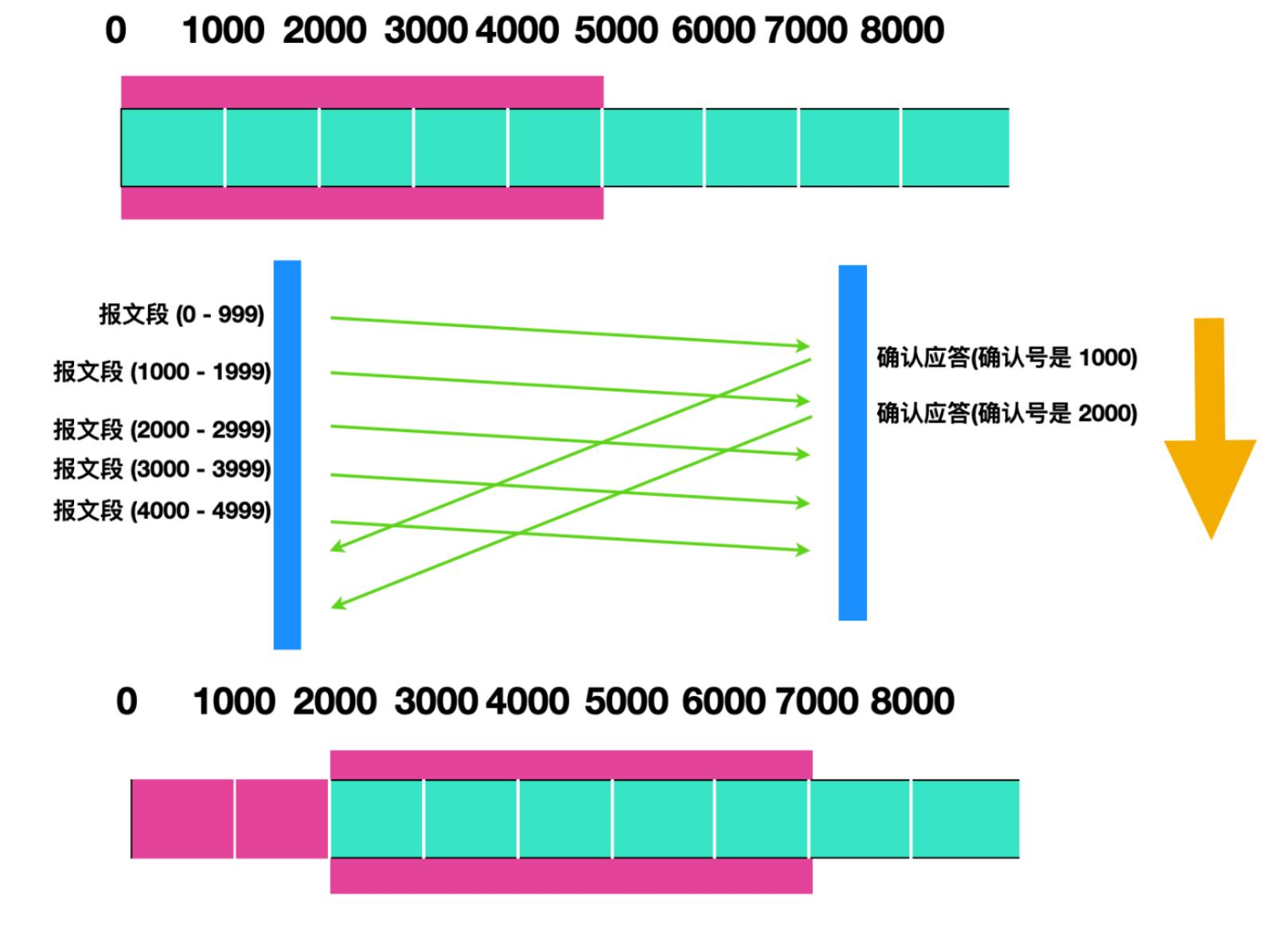 40 张图带你搞懂 TCP 和 UDP