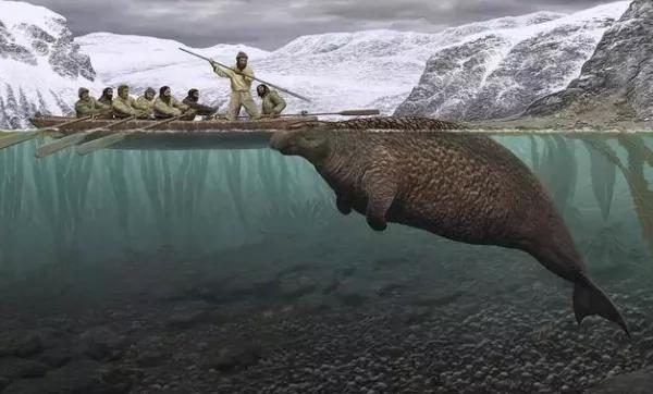 全世界都有关于人鱼的传说,是巧合吗?