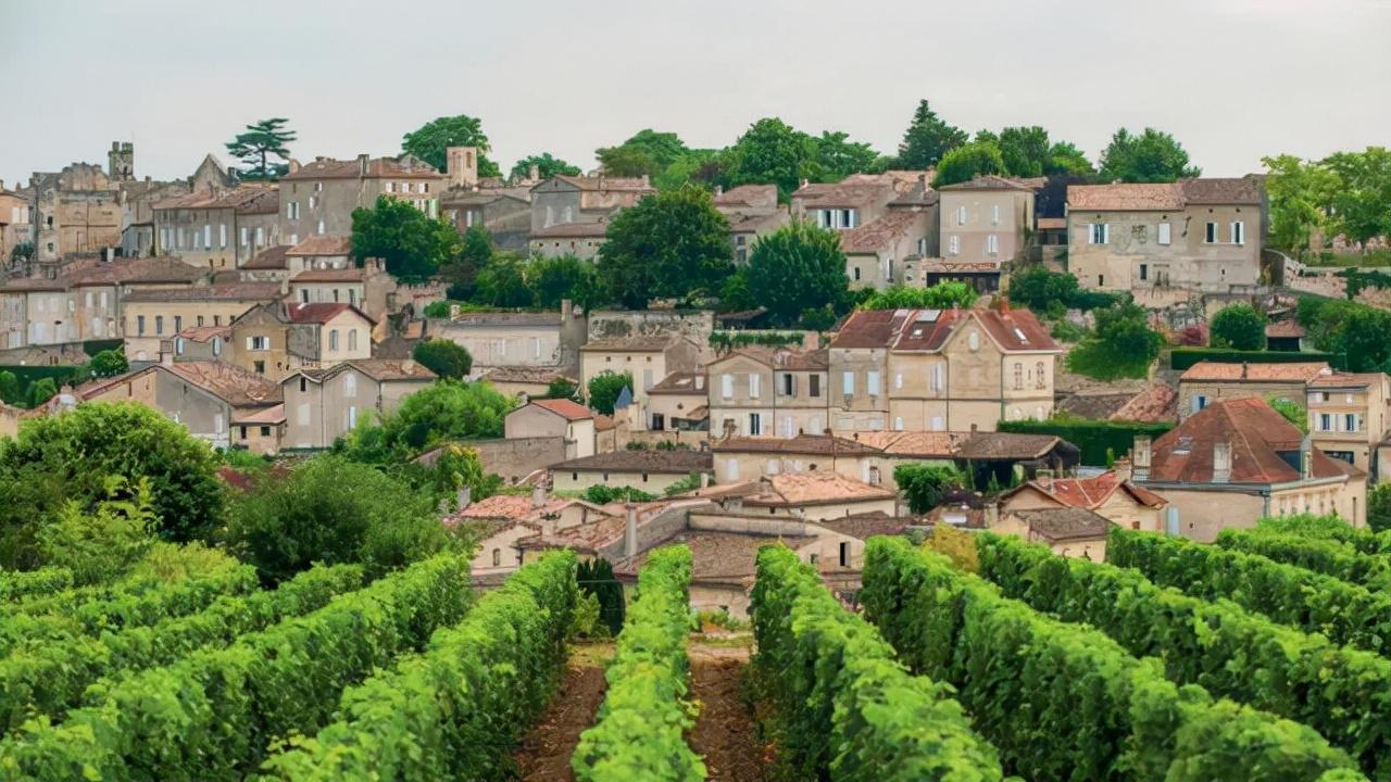 文化如何決定葡萄酒產區聲譽