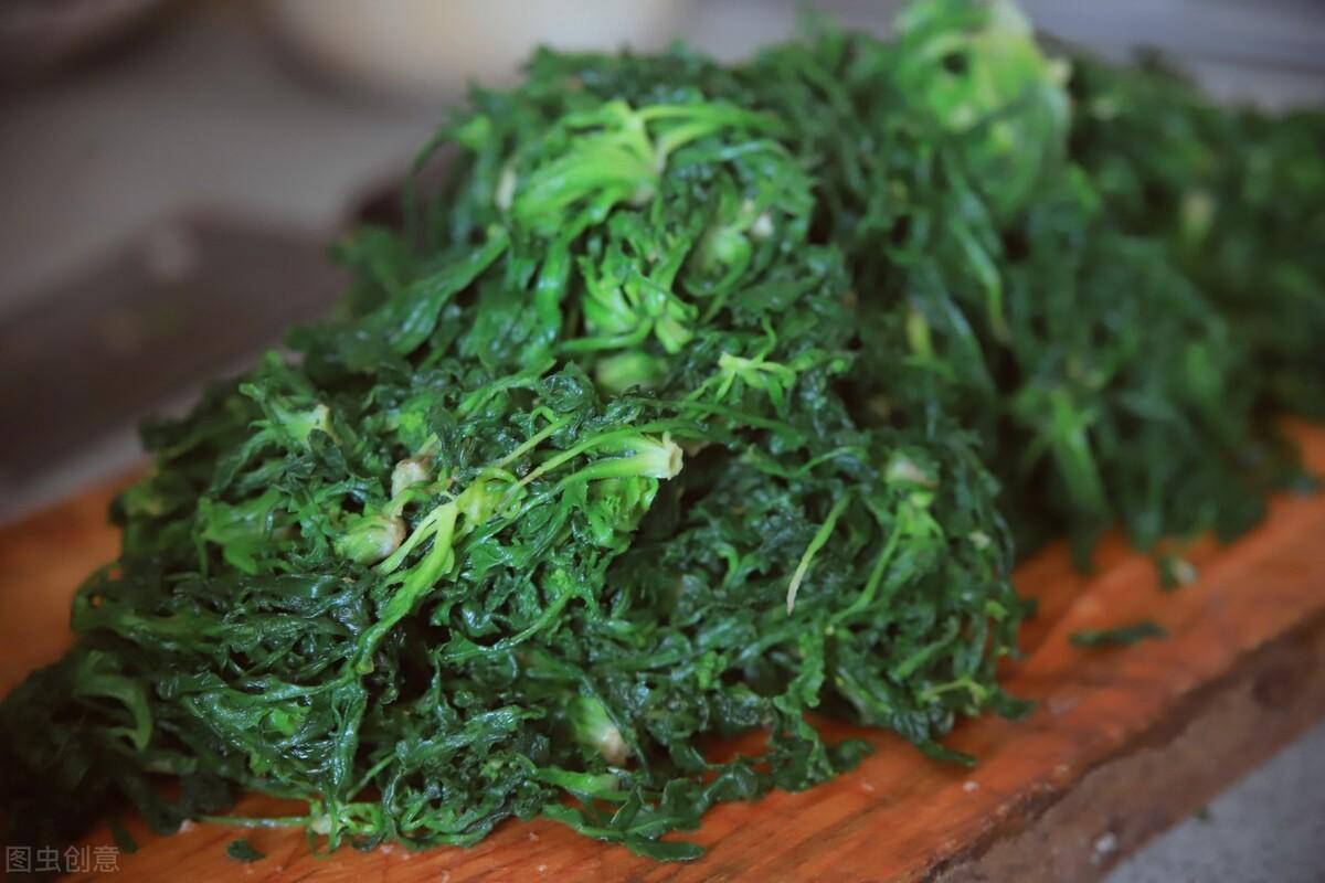 春季多吃应季野菜,这菜随处可见,营养丰富口感好,包饺子太鲜美 美食做法 第4张