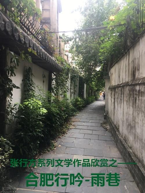 张行方美文:合肥行吟-雨巷