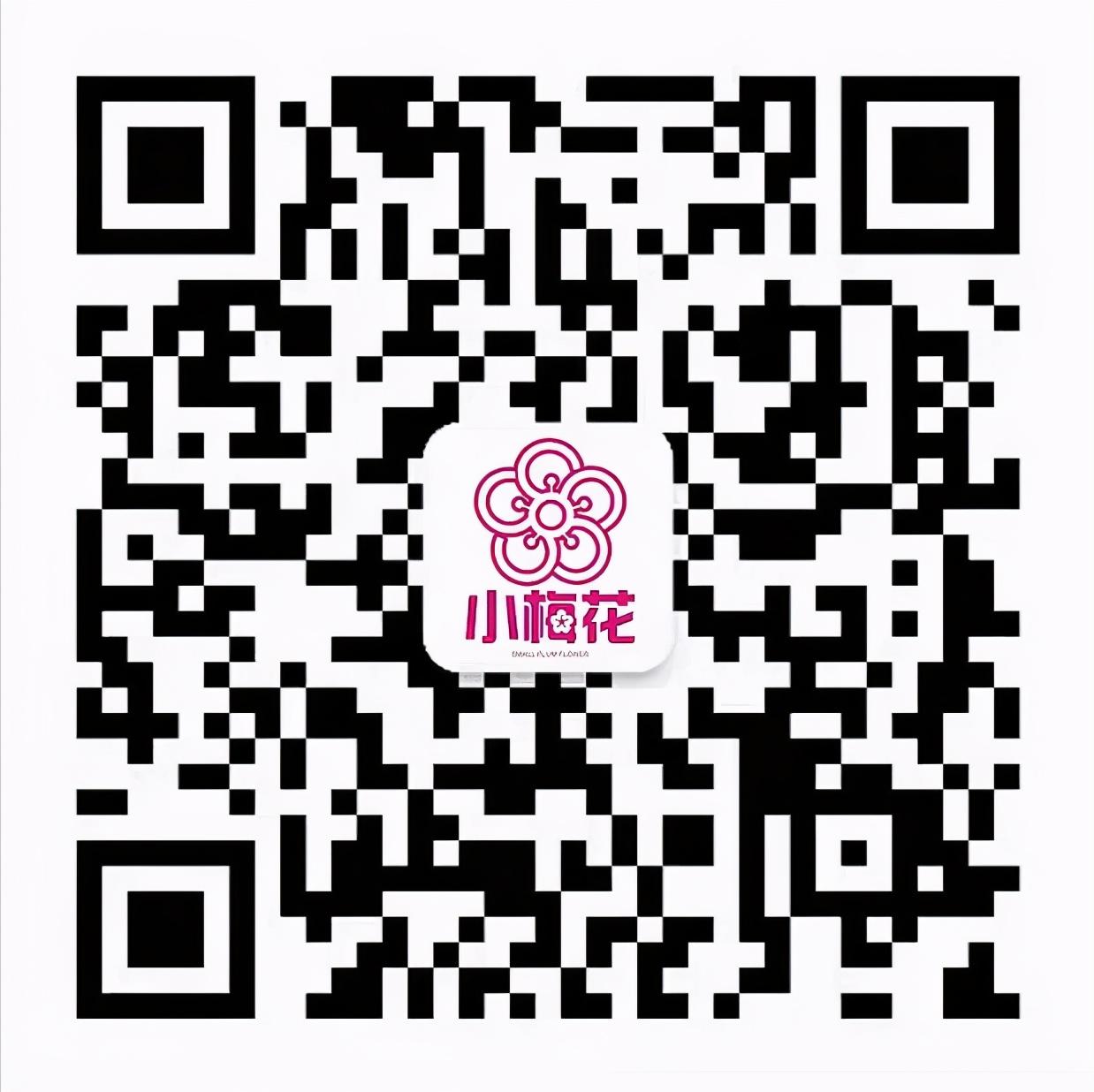 2021小升初招生|华一双师武汉小梅花学校三大班型全面解读