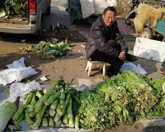北京富豪密度最高的地方竟是菜市场!新发地168个菜农年入过亿 创业 第1张
