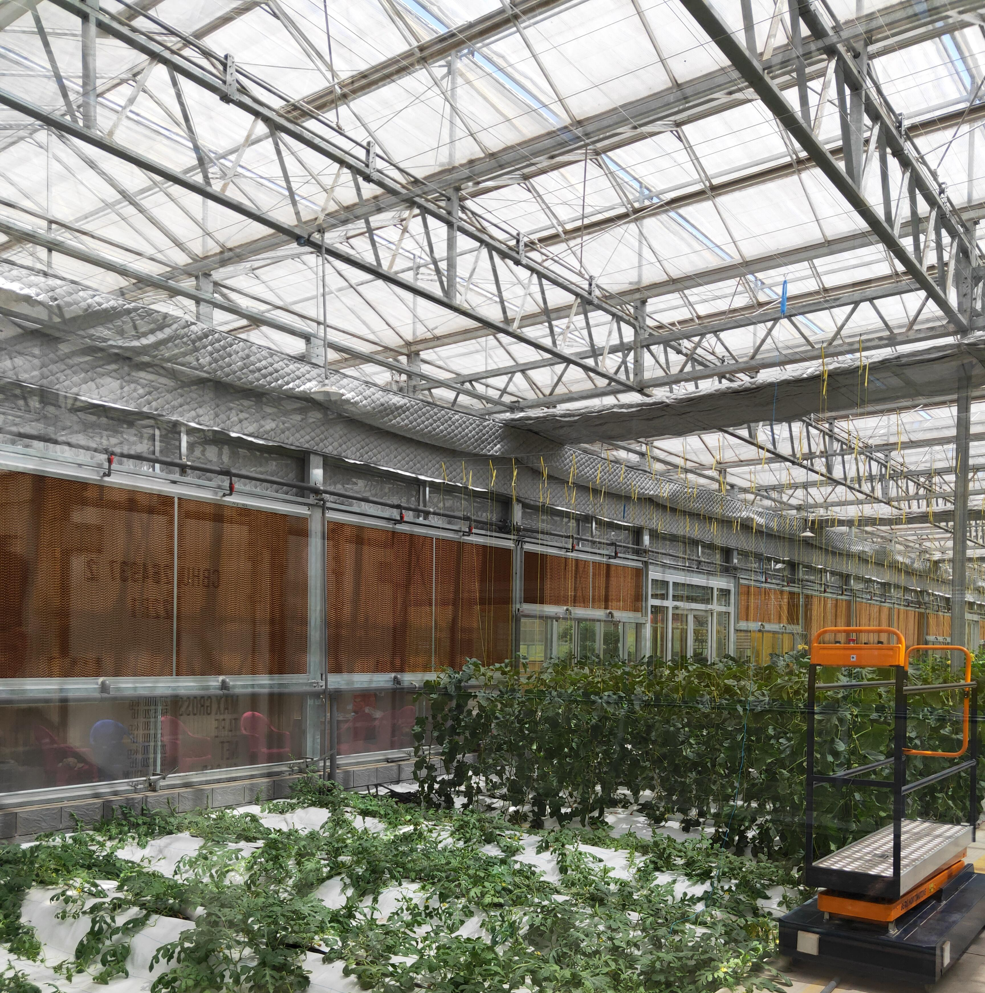 玻璃温室建造工程中不容忽视的桁架结构