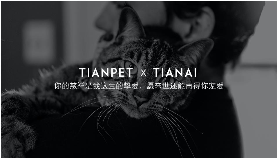 宁波宠物火化哪里有?TIANPET天宠30万宠物主的安心选择