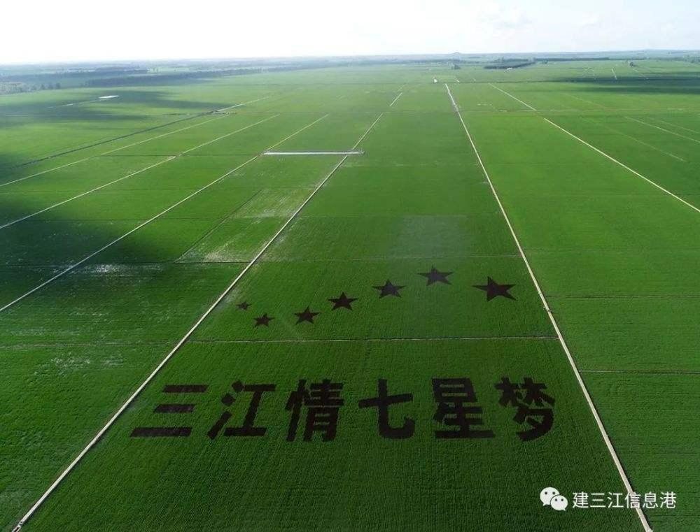 跟着这条线路游遍希望的田野,唱响北大仓欢乐的丰收歌