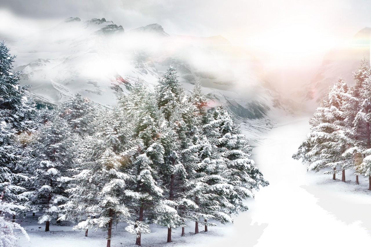 8首冬日诗词,写尽冬日之美:岁月寒凉,因你温暖