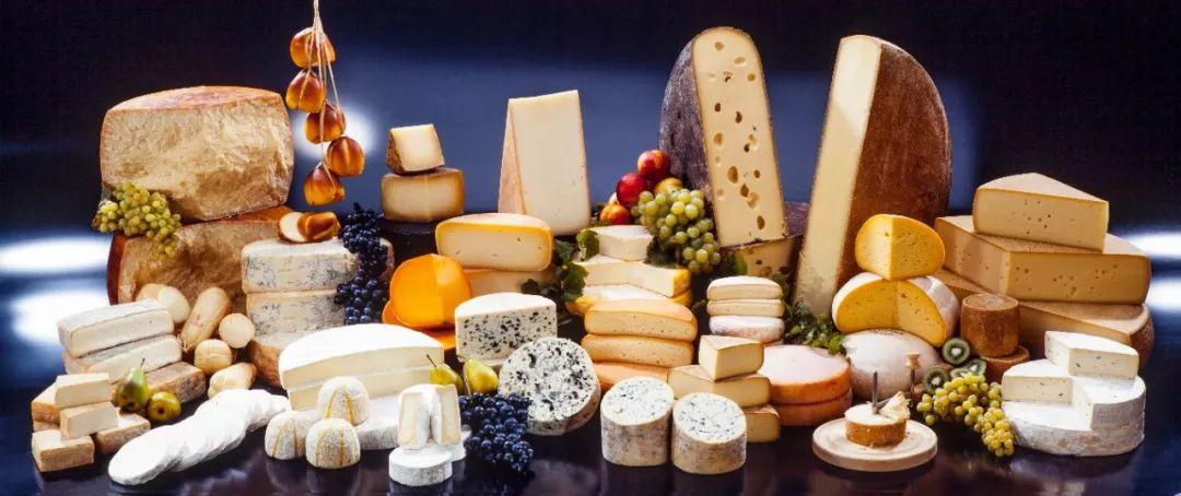 奶酪含钙高、易吸收,多大孩子可以吃?怎么挑?