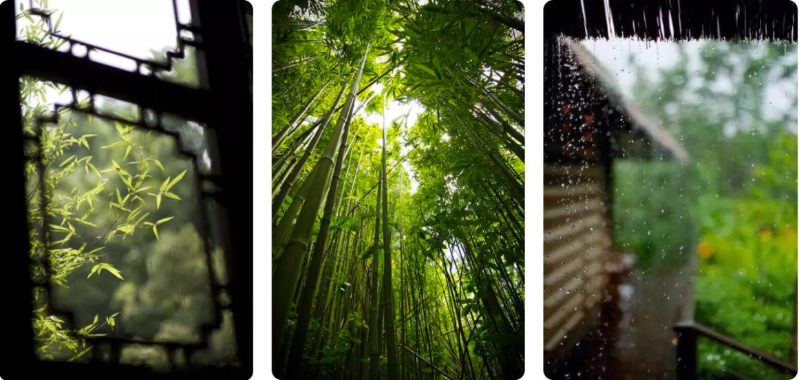 """锦江都城·南岳山庄度假酒店—神仙都不愿错过的""""深氧洗肺之地"""""""