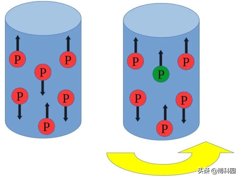 迄今第一次观察到核巴尼特效应!