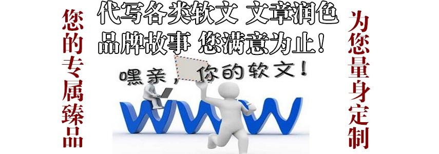 覃雨泽:网络营销策划方案(成功案例!)