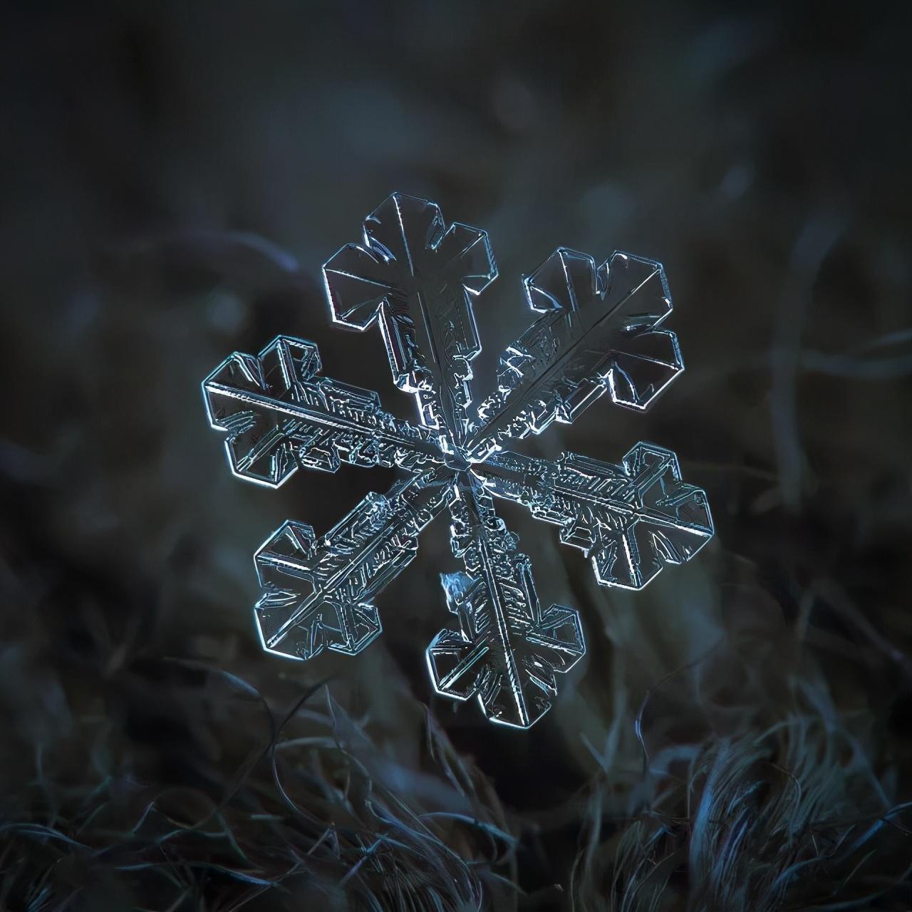 他用一部烂相机,花10年时间只拍一朵雪花,照片放大后被震撼了