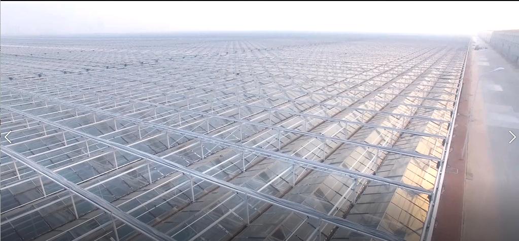 文洛式连栋温室天沟设计与应用