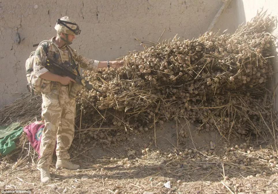 金新月位于哪三國交界地帶(CIA是如何將阿富汗打造成世界第一毒窩的?)
