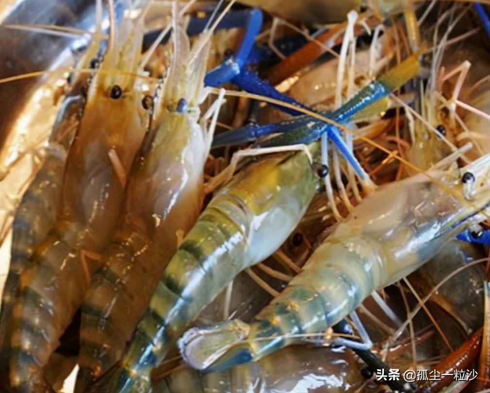 海南省屯昌县6大推荐美食,这些地方美食值得你的品尝