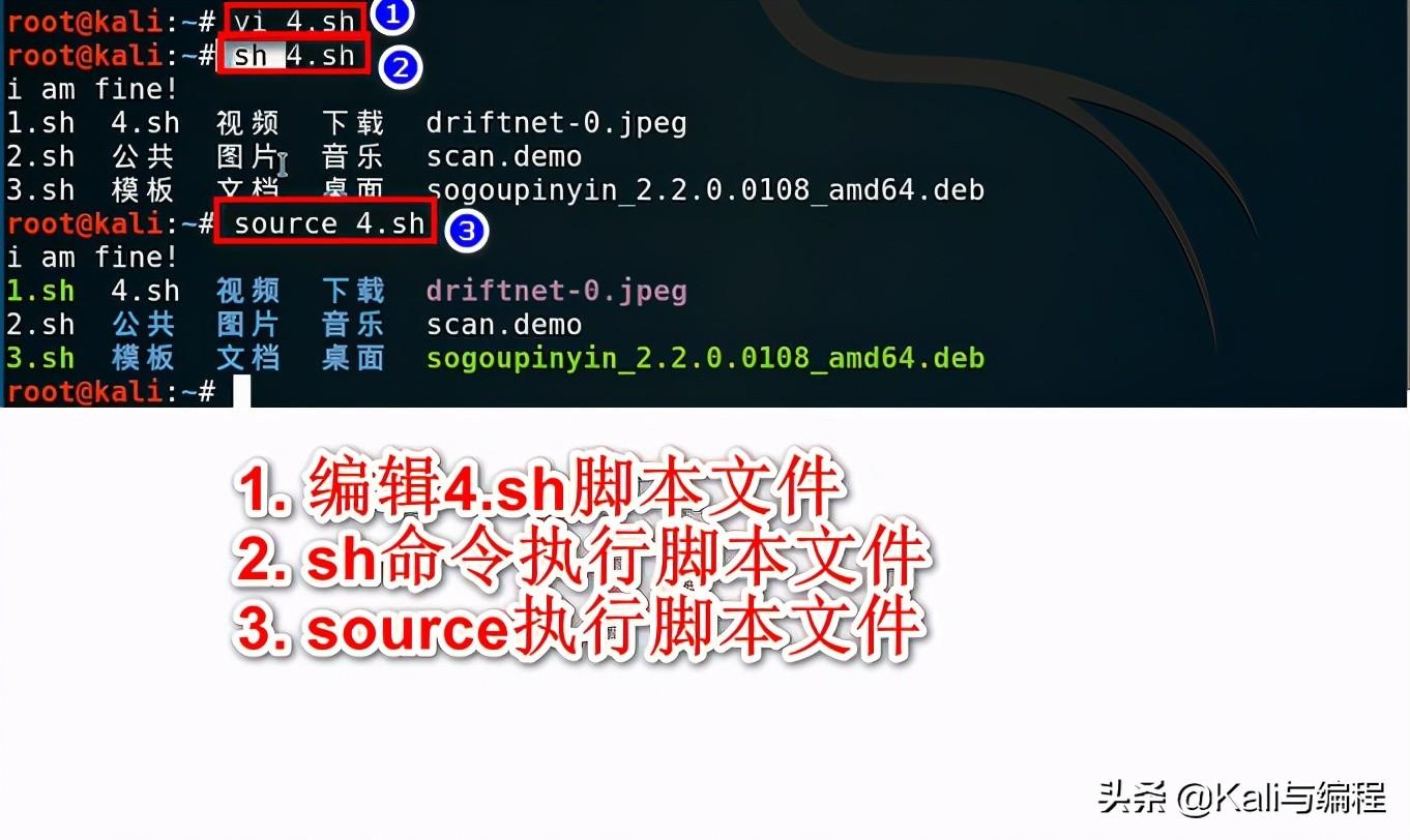 小白7天掌握Shell编程:脚本的创建和执行