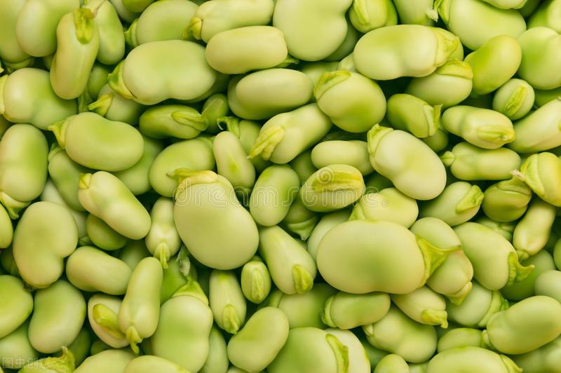 夏吃豆胜吃肉,立夏过后,这种豆子记得吃,好吃又解馋,营养丰富 美食做法 第5张