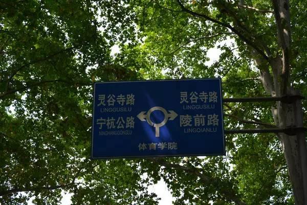 @灵谷寺路8号:南京体育学院,说不出那句再见