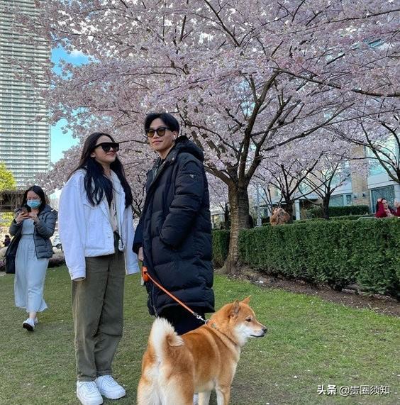 陈坤19岁的儿子疑恋爱了,与长发美女遛狗看樱花,甜蜜对视超甜