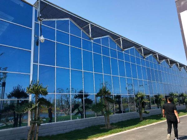 玻璃温室大棚阳光房生态餐厅建造中注意事项集锦,避免踩雷指南