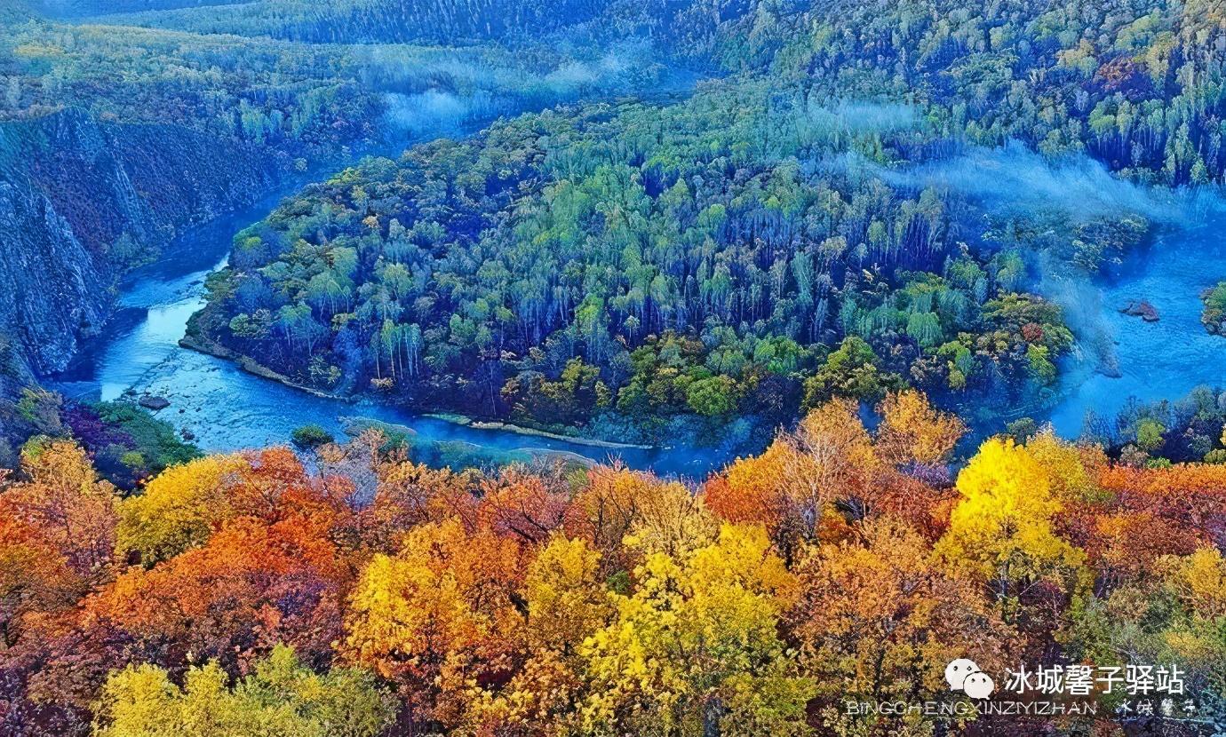 """追寻五花山色!这个秋日,在龙江大地开启""""好色""""之旅"""