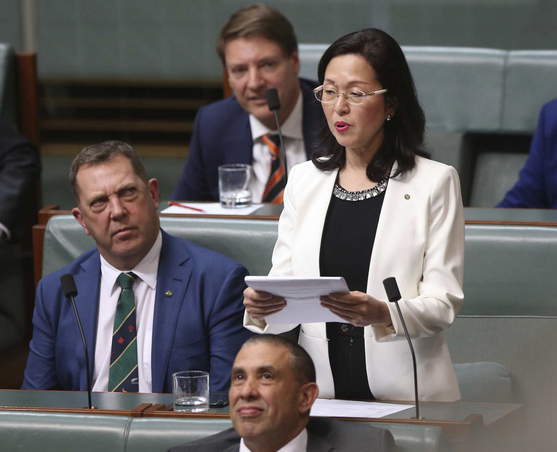 澳议员要求在澳华裔批评中国表忠心,前总理痛斥:这种行为太恶心
