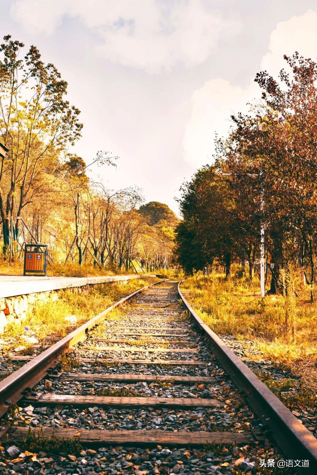 这20位诗人用30首诗词,写尽了秋天的美-第2张图片-诗句网