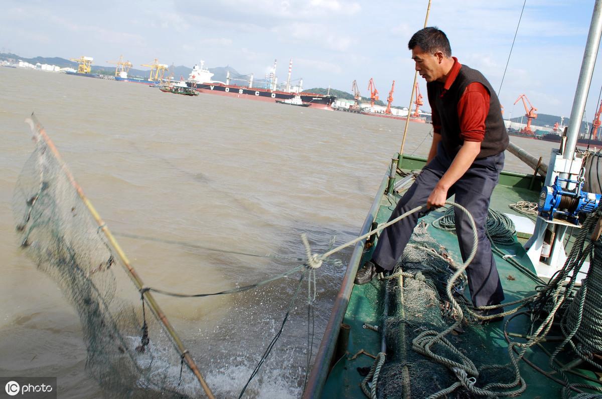 中华绒螯蟹是如何通过洄游来获得更好的发育和生长