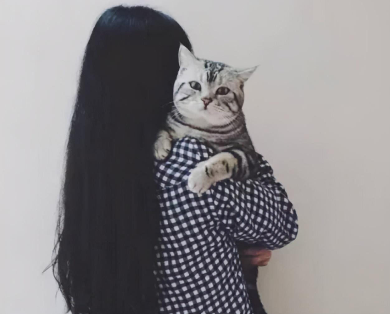 猫咪为什么更喜欢女性?背后是有原因的