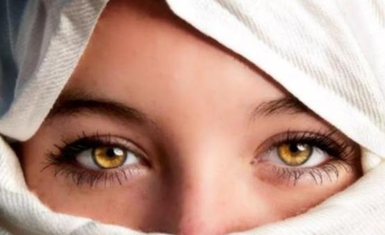 5000万年来,人类在不断进化,为何眼睛却毫无进化痕迹?