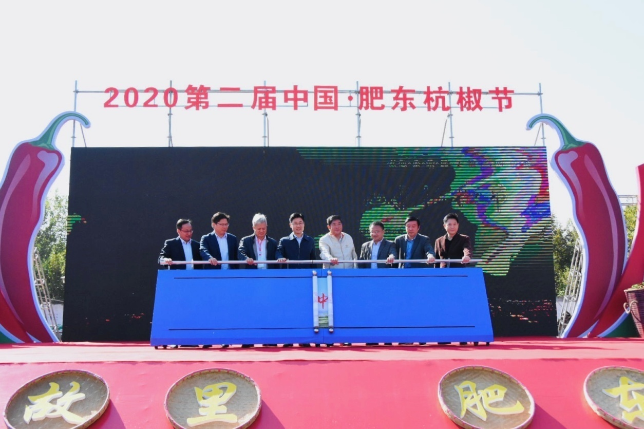2020第二届中国-肥东杭椒节隆重开幕