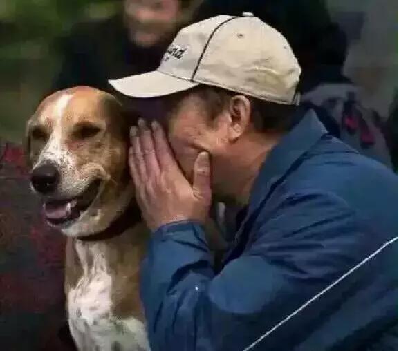 """养狗的人,都有这7个""""怪癖"""",太准了"""