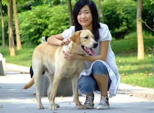为什么狗狗更喜欢女生,而不喜欢男生?原因有几个