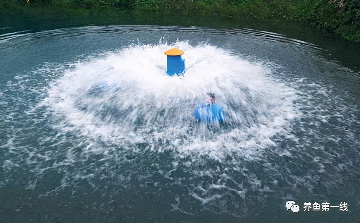提前预测鱼类可能浮头的方法及其缺氧翻塘的急切解救措施