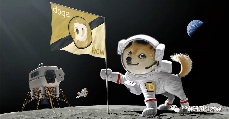 为什么说比特币瀑布之后,狗狗币Doge和屎币Shib是最好的选择
