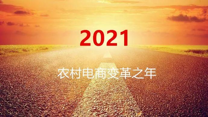 魏延安:2021,农村电商的变革之年