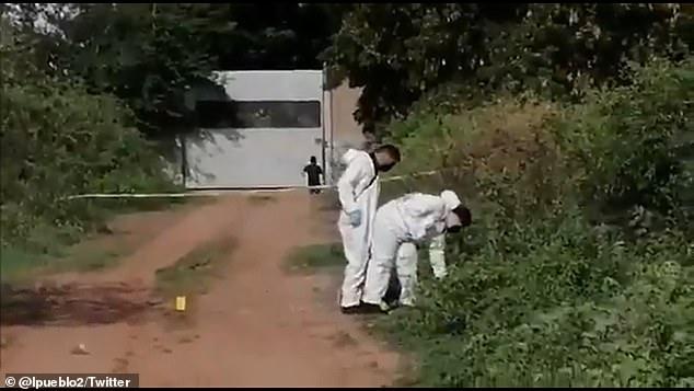 墨西哥2名少女被勒死后抛尸,尸体还被纵火焚烧,死状相当悲惨