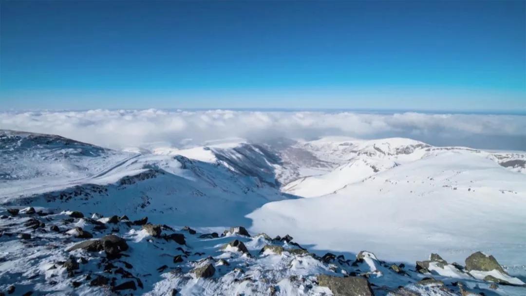 """大雪节气想看雪?你和真实的雪景之间,差的就是""""它"""""""