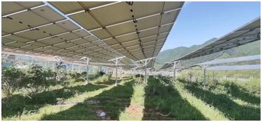 浙江:全国首批高速省界闲置收费站改建光伏项目投入使用